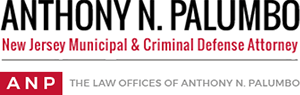 The Law Offices of Anthony N. Palumbo - Criminal Defense Attorney